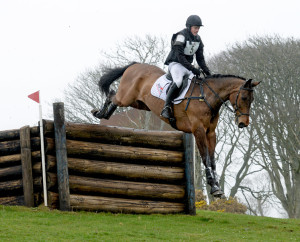 NIHB Young Performance Horse Championships Start List- Class 2: 5 Year Old Performance
